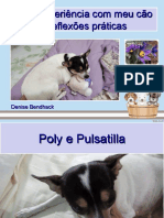 ppt Poly COMPLETO.ppt