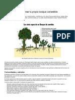 Como crear tu propio bosque comestible