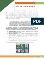 FISIOLOGÍA DE LOS SENTIDOSSSS
