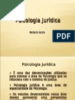 Jurídicas psi-Principais conceitos