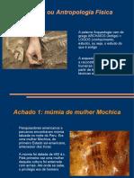 Texto 9 Antro_Arqueologica.ppt