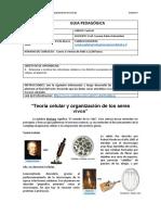 GUIA-PEDAGÓGICA-Primero-Medio-A-Teoría-celular-y-Células.pdf