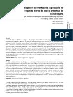 vantagens_desvantagens_pecuaria_brasil_atores.pdf