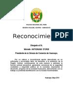 RECONOCIMIENTO PERGAMINO.docx