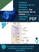 Control Genetico-Fisiologia.pptx