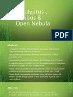 Eucalyptus_Nimbus_OpenNebula
