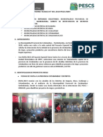 INFORME N 001-2019-PESCS