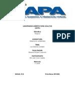 tarea 1 sistem. d cont. efri.docx