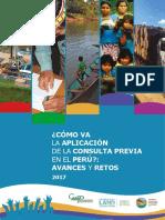 ConsultaPrevia_CAAAP_2daEd_2017.pdf