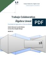 TRABAJO ALGEBRA LINEAL ..pdf
