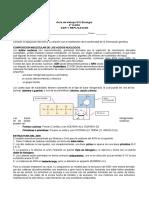GUIA2_4medio_replicacion