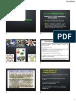1 Introducao a ADM.pdf