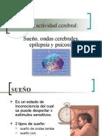 Estados de actividad cerebral