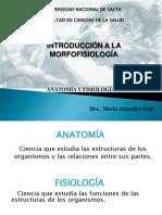 1- INTRODUCCION A LA MORFOFISIOLOGIA