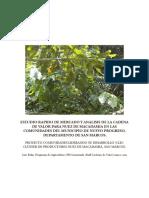 Estudio Rapido Mercado Nuez Macadamia