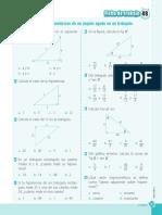 Ficha_de_trabajo_razones_trigonométricas_de_un_ángulo_agudo_en_un_triángulo.pdf
