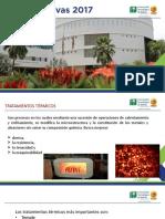 TRATAMIENTOS TÉRMICOS.pptx