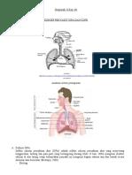 KONSEP PENYAKIT ISPA DAN COPD