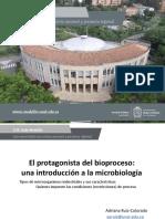 Protagonista del proceso.pdf