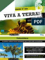 CN 6º - plantas.pdf