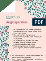 Características Gerais das Angiospermas