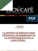 LA GESTIÓN DE RIESGOS COMO ESTRATEGIA DETERMINANTE DE LA SUSTENTABILIDAD DE LA CAFICULTURA V3.pdf