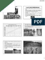 leguminosa pdf impimir