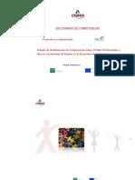 dicciona de compt 2.2-CLAVE.pdf
