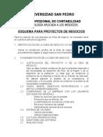ESQUEMA  DE PLANES DE NEGOCIOS - copia