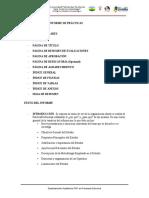 ESTRUCTURA DEL INFORME Y PLANILLAS PRACTICAS PROFESIONALES(1)