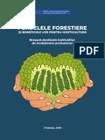 Perdelele-forestiere-pentru-colegii