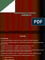 fileshare.ro_Vegetatia_si_fauna_Americii_2011.ppt