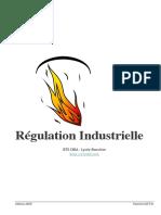 Regulation Industrielle.pdf