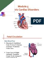 pp_cardiac.ppt