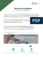 Instructivo Permiso de Circulación.pdf