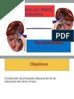 Enfermedades del riñón y de vías urinarias