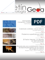 BoletinGEDA13.pdf
