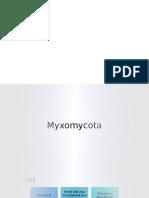 myxomycota fixed.pptx