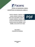 Relatório 1- Produçao de biodiesel