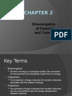 2-Bioenergetics.pptx
