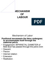 CSKL 1b - Mechanism of labour