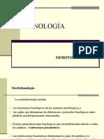 PPT Morfofonología