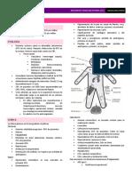 Insuficiencia Suprarrenal.pdf