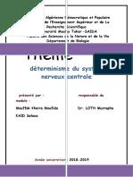 detreminisme.docx