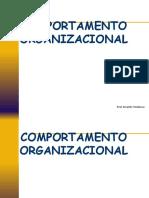 comportamento organizacional.ppt