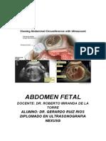 06 ABRIL Abdomen Fetal LISTO