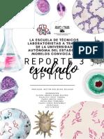 Reporte 4 microbiologia.pdf