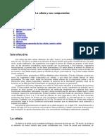 celula-y-sus-componentes.doc