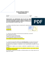 2. Pauta prueba Bio II A.doc