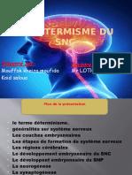 déterminisme du SNC.pptx